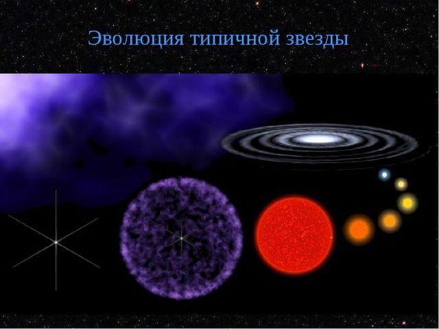 Эволюция типичной звезды