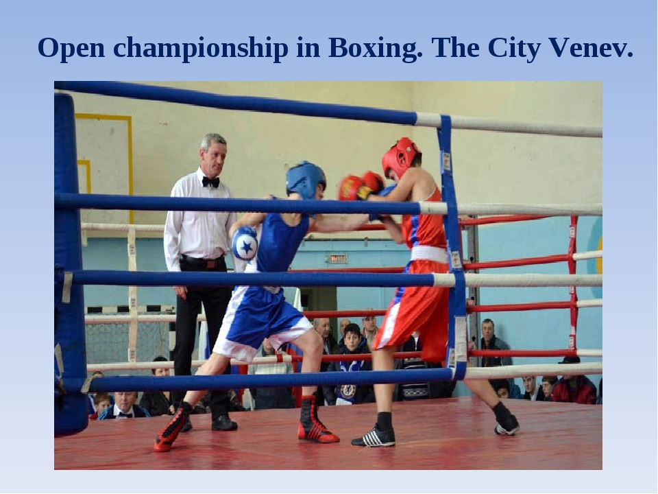 Open championship in Boxing. The City Venev.