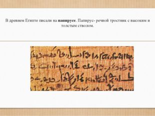 В древнем Египте писали на папирусе. Папирус- речной тростник с высоким и тол