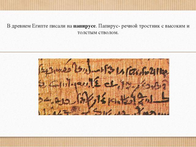 В древнем Египте писали на папирусе. Папирус- речной тростник с высоким и тол...