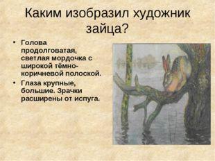 Каким изобразил художник зайца? Голова продолговатая, светлая мордочка с широ