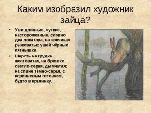 Каким изобразил художник зайца? Уши длинные, чуткие, настороженные, словно дв