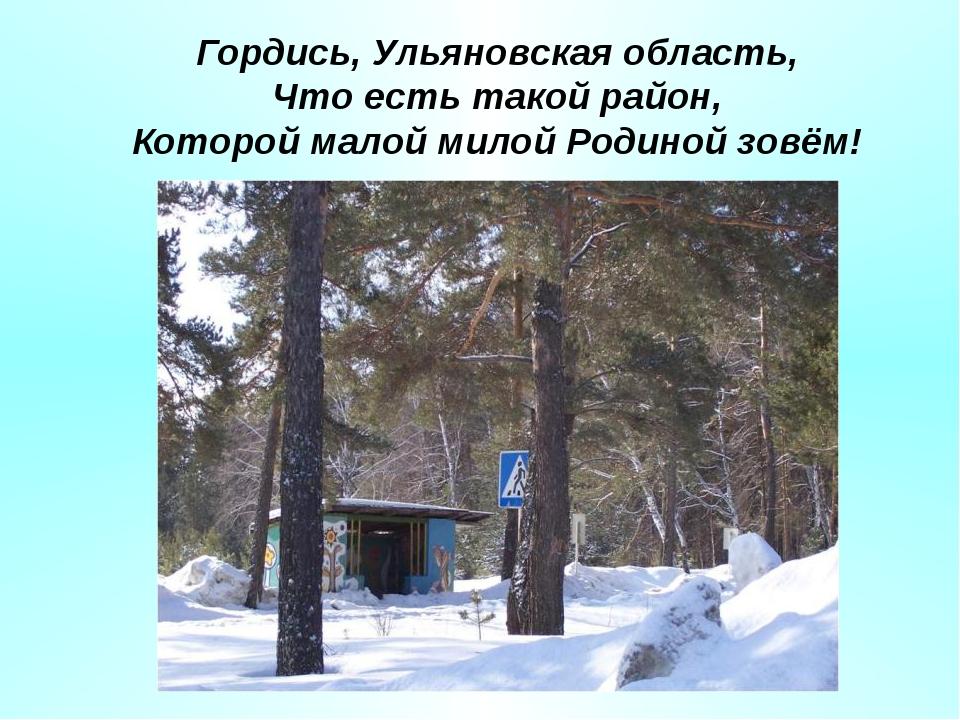 Гордись, Ульяновская область, Что есть такой район, Которой малой милой Родин...
