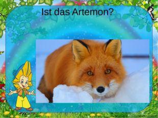 Ist das Artemon? Ekaterina050466