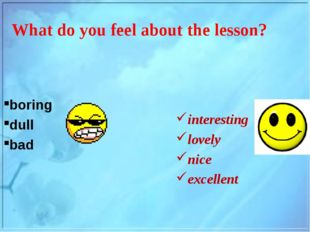What do you feel about the lesson? boring dull bad interesting lovely nice ex