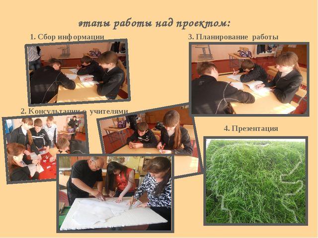 этапы работы над проектом: 3. Планирование работы 1. Сбор информации 2. Консу...