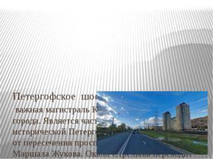 Петергофское шоссе – важная магистральКрасносельского района города. Являет
