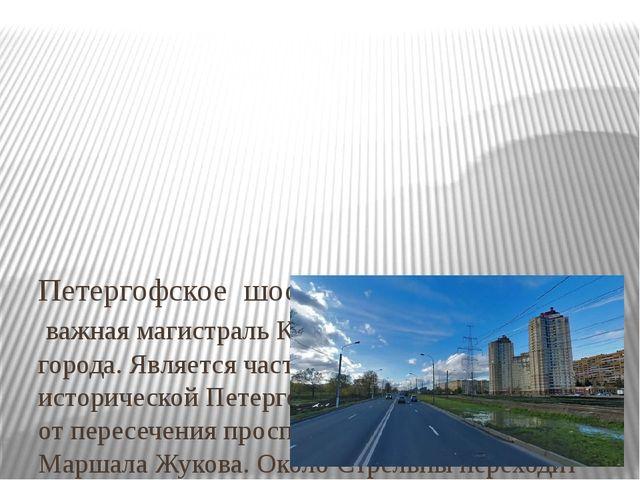 Петергофское шоссе – важная магистральКрасносельского района города. Являет...