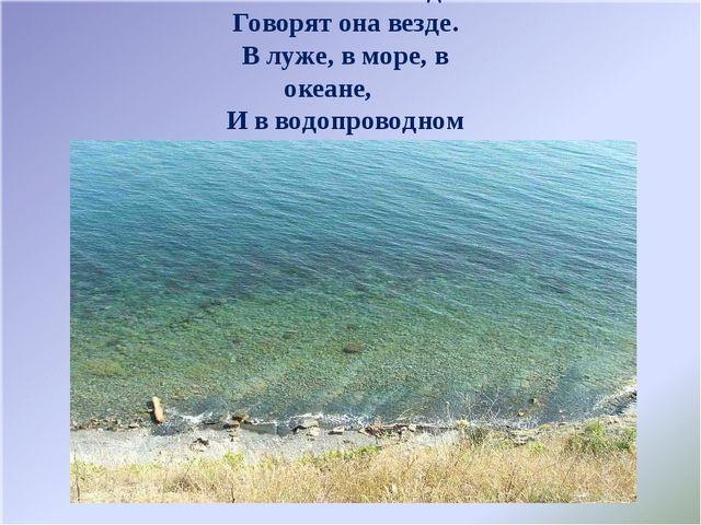 Вы слыхали о воде? Говорят она везде. В луже, в море, в океане, И в водопрово...