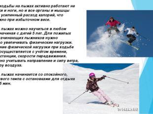 Во время ходьбы на лыжах активно работают не только руки и ноги, но и все орг