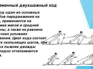 Попеременный двухшажный ход Этот ход один из основных способов передвижения н