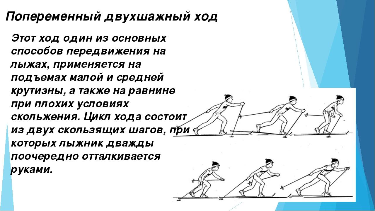 Попеременный двухшажный ход Этот ход один из основных способов передвижения н...