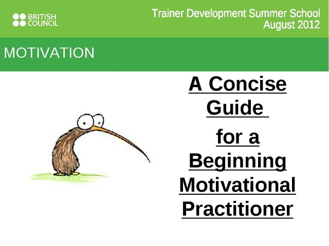 MOTIVATION A Concise Guide for a Beginning Motivational Practitioner
