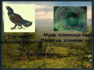 """Я заблудился... """"Глухарь!""""- догадался Васютка Муха- пленница паука, Васютка-"""