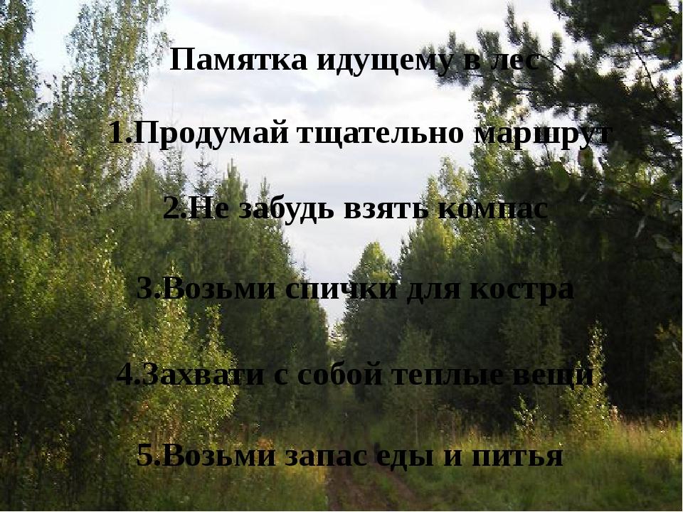 Памятка идущему в лес 1.Продумай тщательно маршрут 2.Не забудь взять компас...