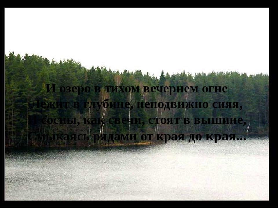 И озеро в тихом вечернем огне Лежит в глубине, неподвижно сияя, И сосны, как...