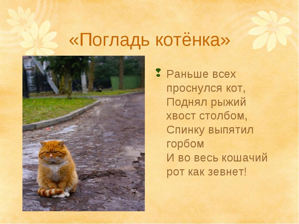 «Погладь котёнка» Раньше всех проснулся кот, Поднял рыжий хвост столбом, Спин...