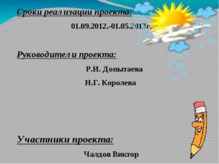 . Сроки реализации проекта: 01.09.2012.-01.05.2013г. Руководители проекта: Р.