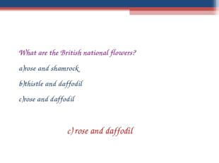 What are the British national flowers? rose and shamrock thistle and daffodil
