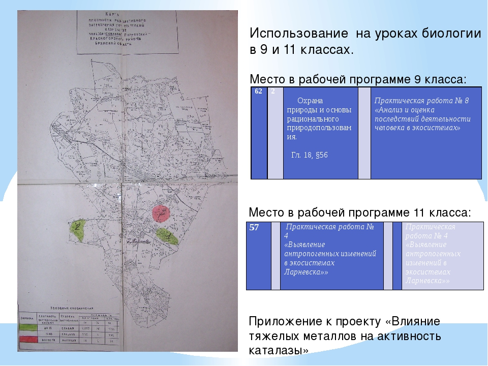 Приложение к проекту «Влияние тяжелых металлов на активность каталазы» Исполь...