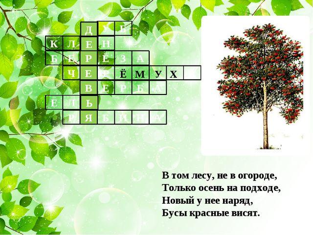 В том лесу, не в огороде, Только осень на подходе, Новый у нее наряд, Бусы кр...