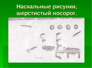 Наскальные рисунки, шерстистый носорог.