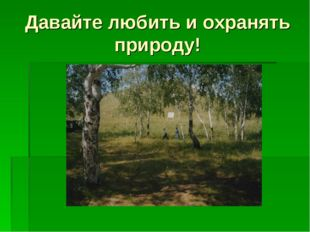 Давайте любить и охранять природу!