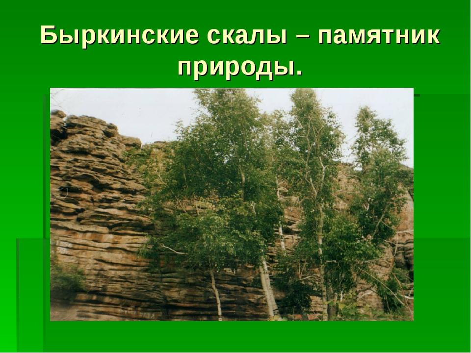 Быркинские скалы – памятник природы.