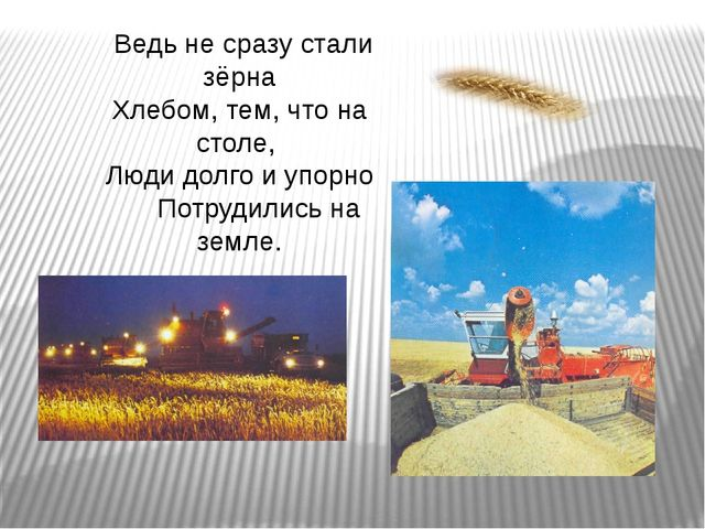 Ведь не сразу стали зёрна Хлебом, тем, что на столе, Люди долго и упорно Пот...