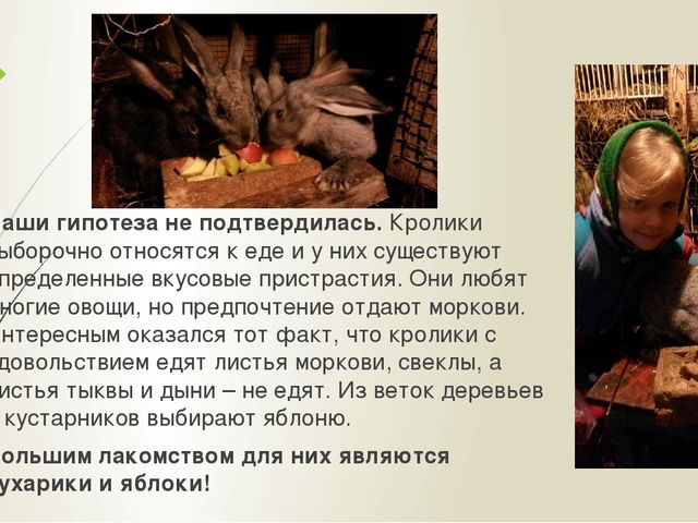 Наши гипотеза не подтвердилась. Кролики выборочно относятся к еде и у них сущ...