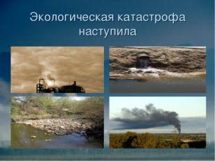 Экологическая катастрофа наступила