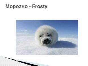 Морозно - Frosty