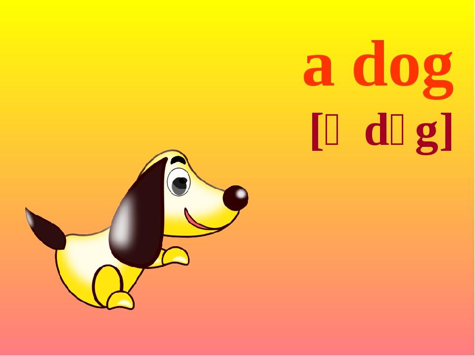 a dog [ə dɔg]
