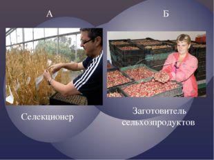 А Б Заготовитель сельхозпродуктов Селекционер