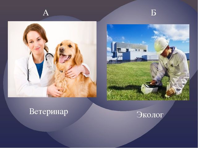А Б Ветеринар Эколог