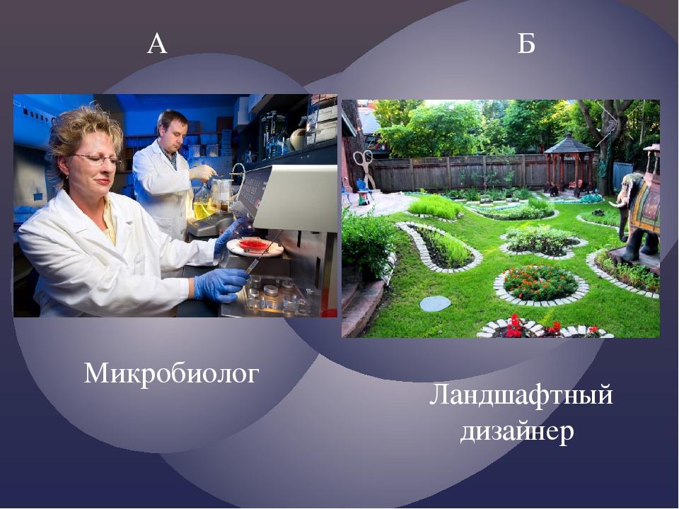 А Б Ландшафтный дизайнер Микробиолог