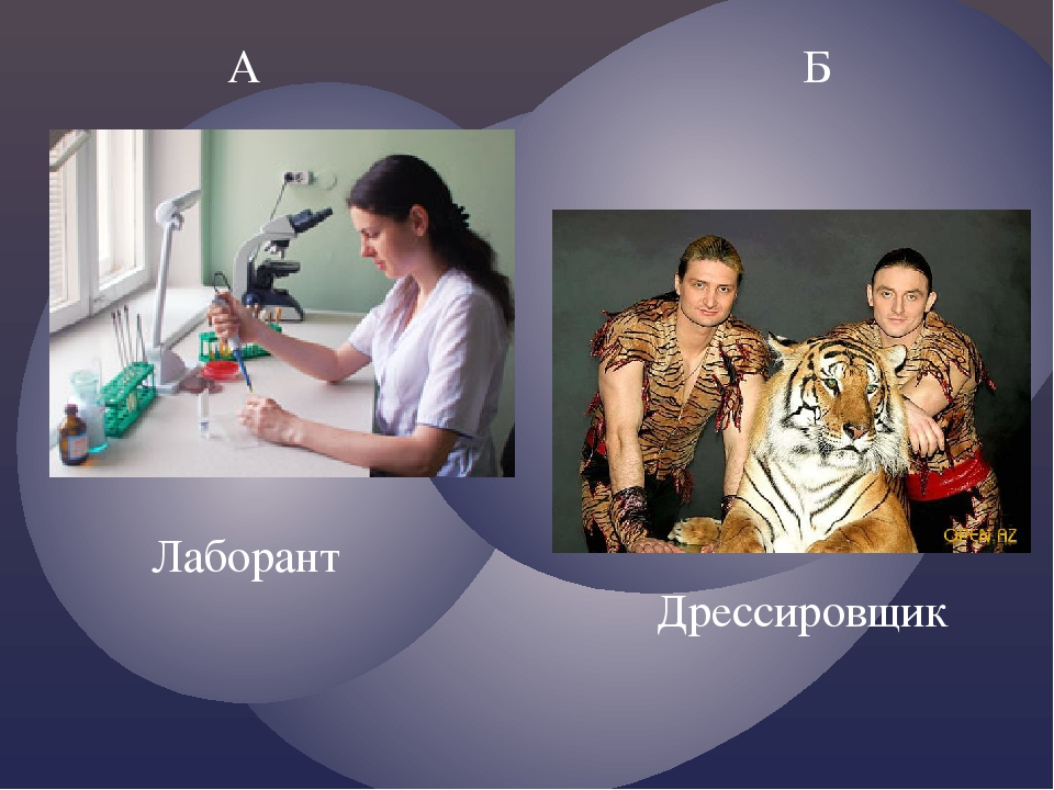 А Б Дрессировщик Лаборант