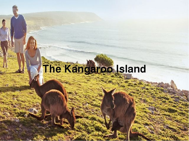 The Kangaroo Island
