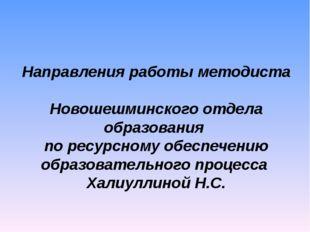 Направления работы методиста Новошешминского отдела образования по ресурсному
