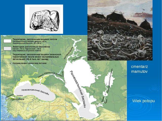 Wiek potopu cmentarz mamutov