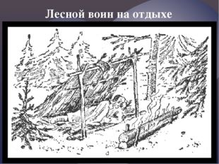 Лесной воин на отдыхе