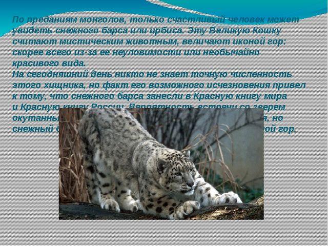 По преданиям монголов, только счастливый человек может увидеть снежного барса...