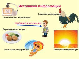 Источники информации Звуковая информация Зрительная информация Обонятельная и