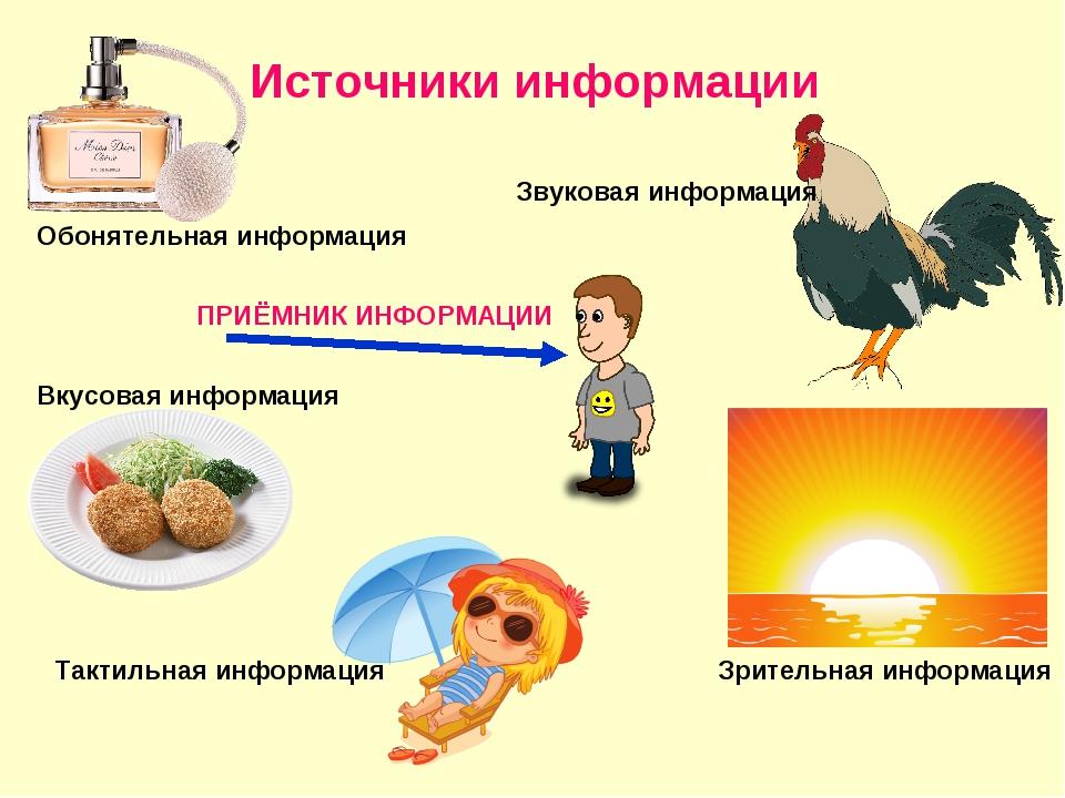Источники информации Звуковая информация Зрительная информация Обонятельная и...