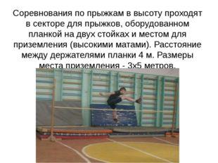 Соревнования по прыжкам в высоту проходят в секторе для прыжков, оборудованно