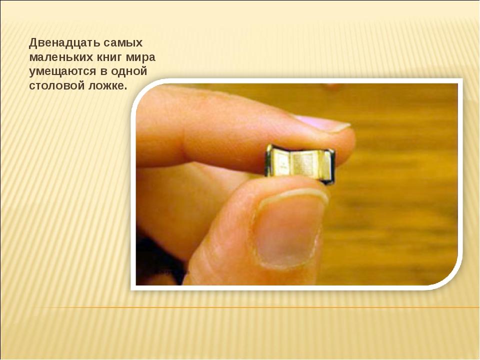 Двенадцать самых маленьких книг мира умещаются в одной столовой ложке.