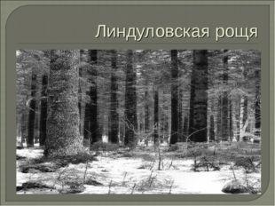 Линдуловская рощя
