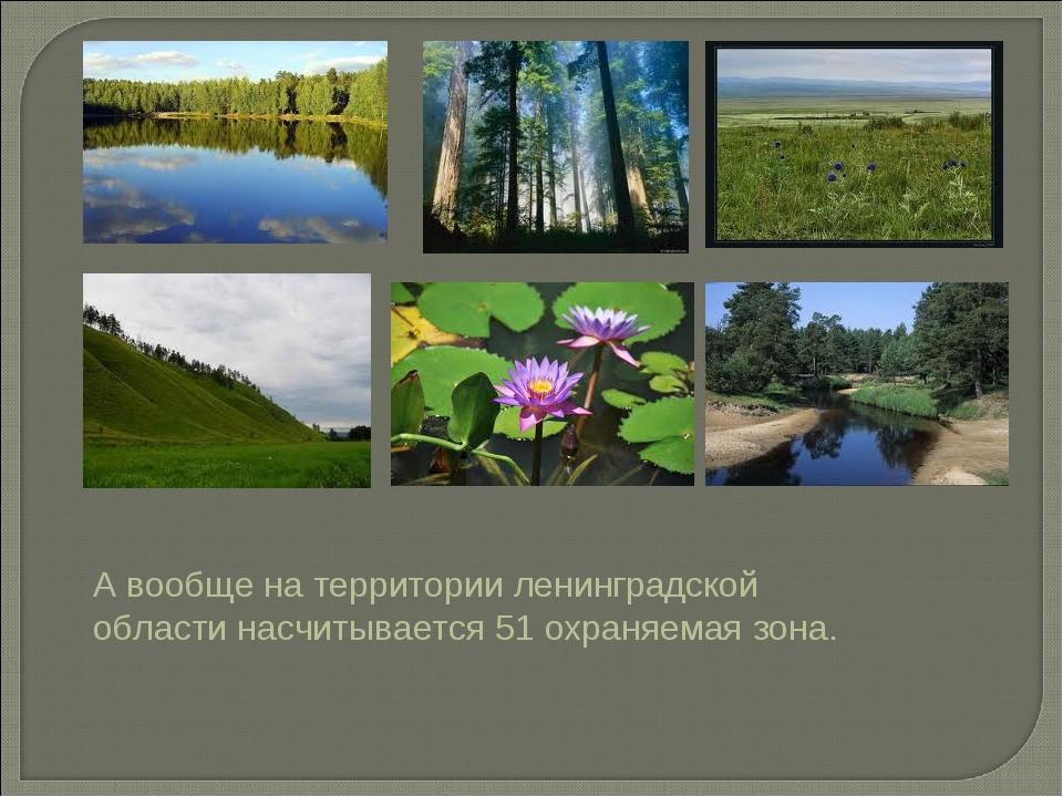А вообще на территории ленинградской области насчитывается 51 охраняемая зона.