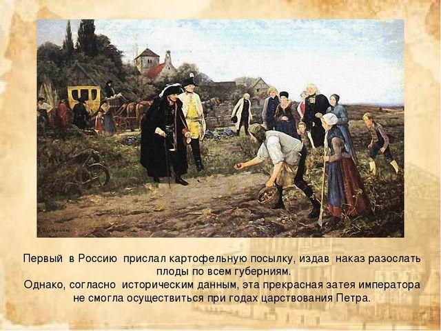 Первый в Россию прислал картофельную посылку, издав наказ разослать плоды...