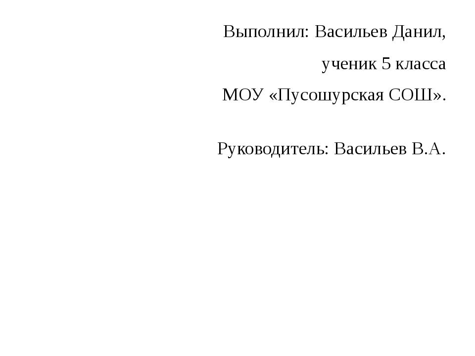 Выполнил: Васильев Данил, ученик 5 класса МОУ «Пусошурская СОШ». Руководител...